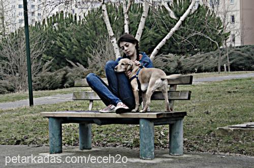 Ecesu TUNA Profile Picture