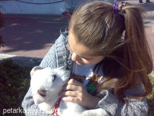 Zehra Topkaya Profile Picture