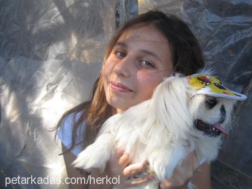 mısra kaçıral profile picture