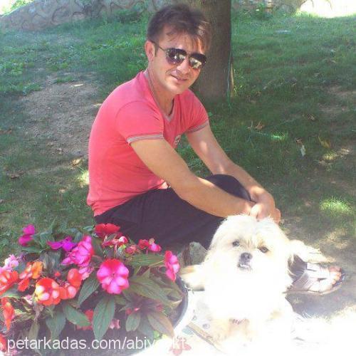 seydi yakut Profile Picture