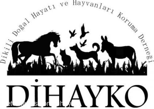 Dihayko Dikili Profile Picture