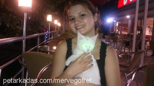 merve karagöz profile picture