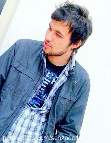 Ferhat Çetinkaya Profile Picture