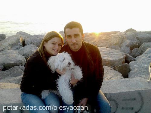 Olesya Özyıldırım Profile Picture