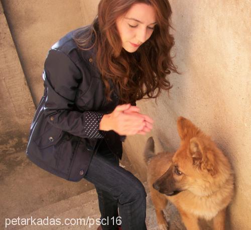 esra ok profile picture