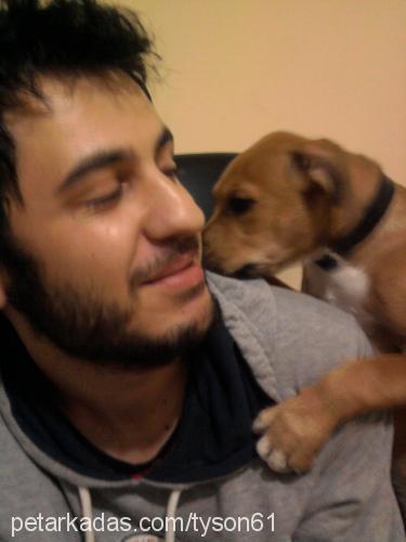 barış aaa Profile Picture