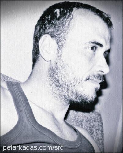 serdar ateş Profile Picture