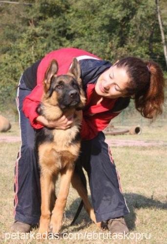Ebru Taşköprü profile picture