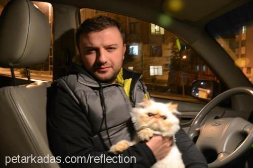 Erman Demiral Profile Picture
