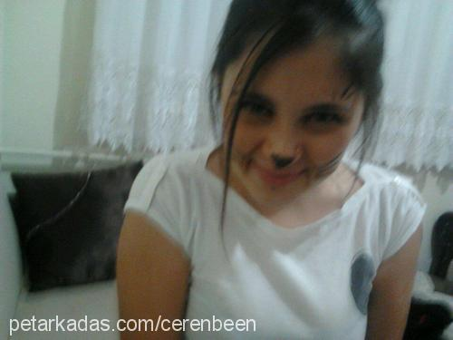 ceren toraman Profile Picture