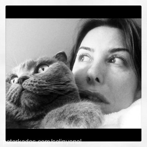 selin yenal profile picture