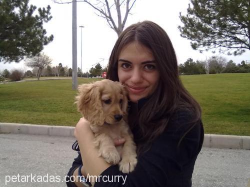 Damla Erdağ Profile Picture