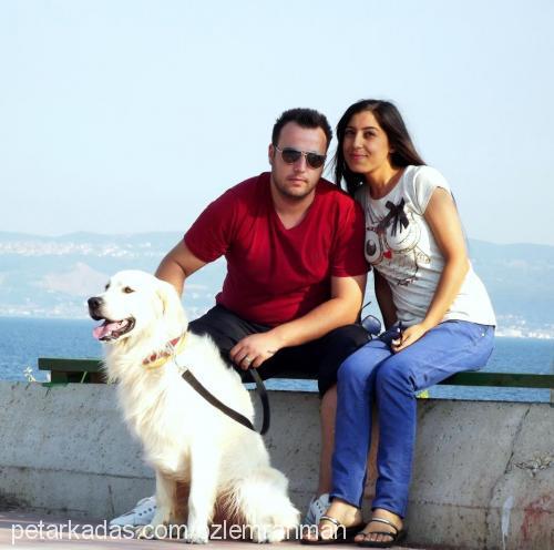 Rahman Özlem ALICI Profile Picture