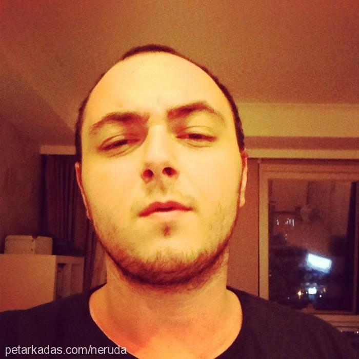 Mert Morgül Profile Picture