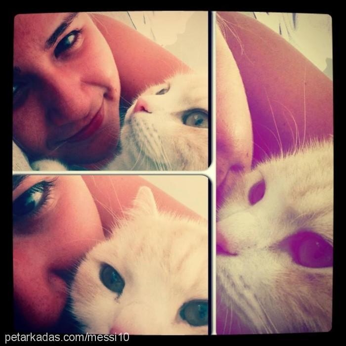 ♥ ♥ ♥ DAMLAFATİHMESSÎ♥ MÉSSÎ Profile Picture