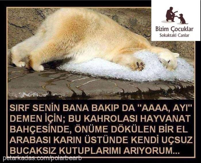 Bülent - Elçin Çetin Profile Picture
