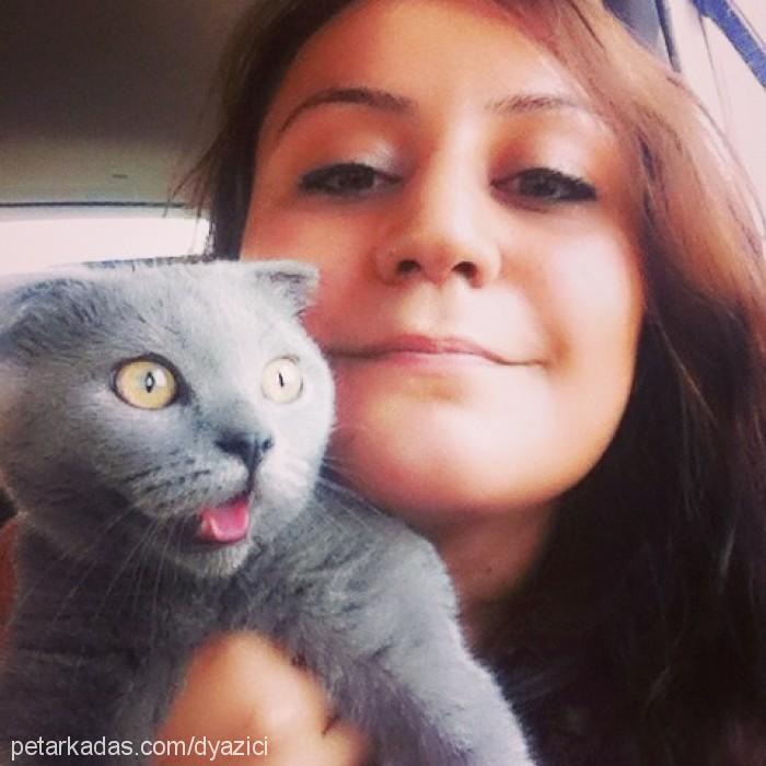 Dilşah Yazıcı Profile Picture