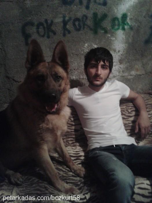 Evren Kırbaç Profile Picture