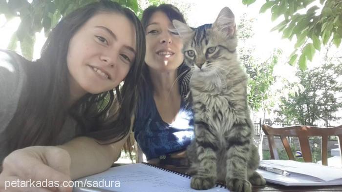 ekin güneş karakoç Profile Picture