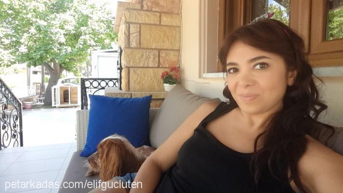 Elif Güçlüten Profile Picture