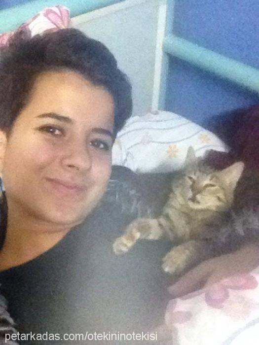 Ceren Sal Profile Picture