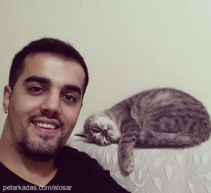 Ali Osman Profile Picture
