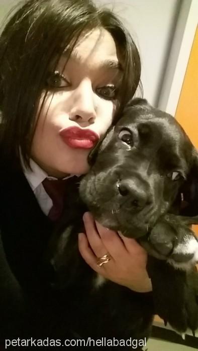 Zeynep Ece Karakova Profile Picture
