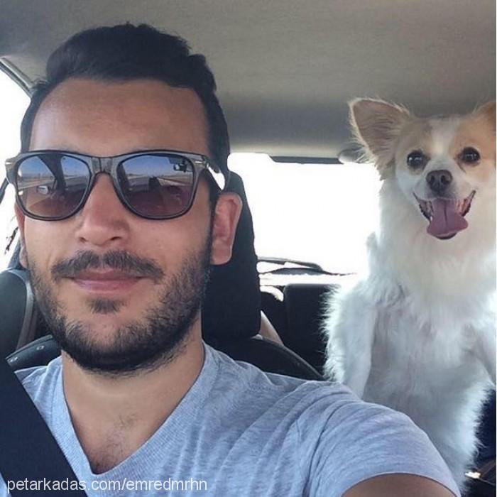 Emre Demirhan Profile Picture