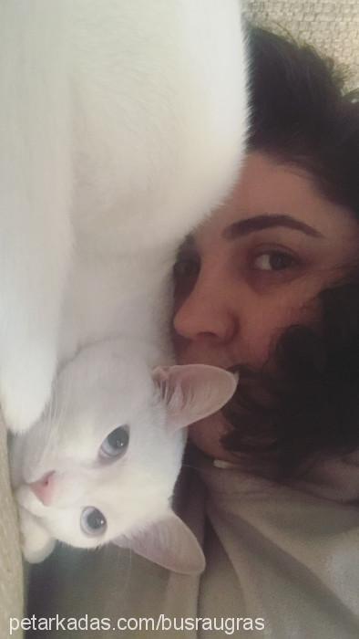 Büşra Uğraş profile picture