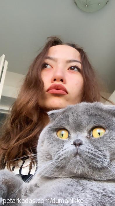 Rümeysa Gökçe Profile Picture