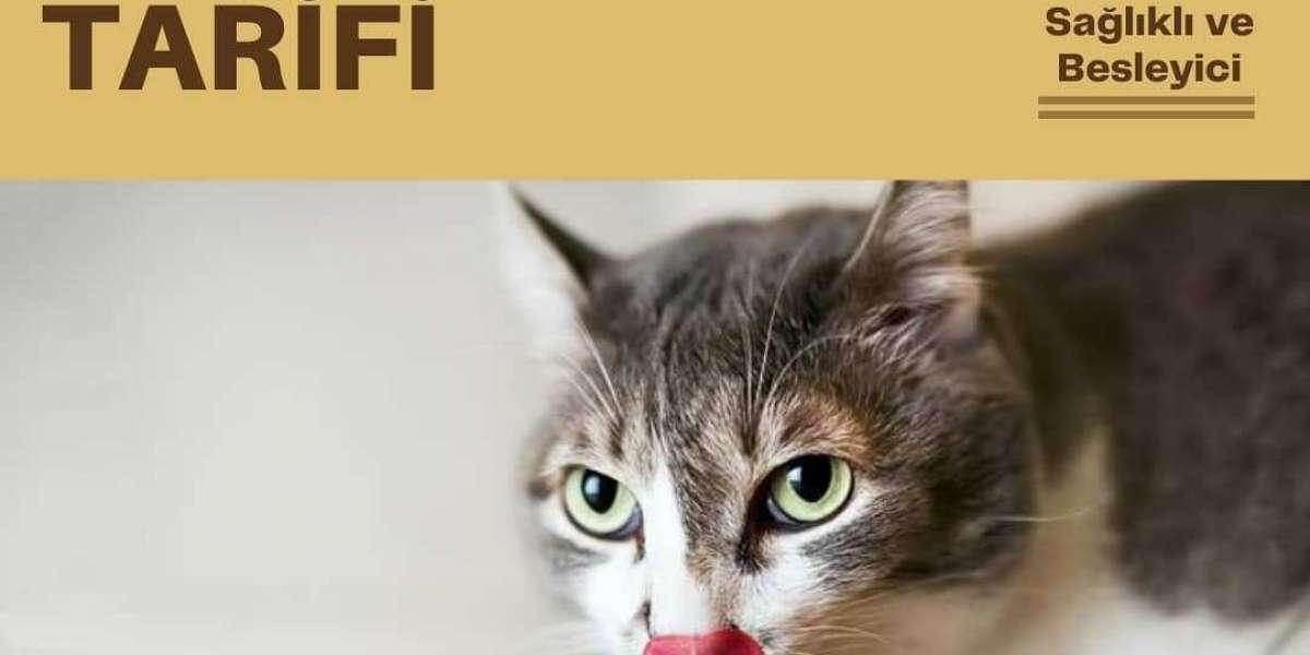 Kediler için ev yapımı yaş mama tarifi